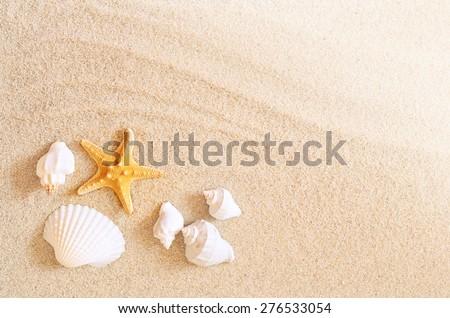 Starfish on the seashore and summer beach #276533054