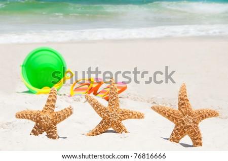 starfish playing at the beach