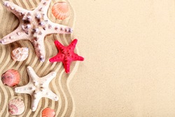 Starfish, seashells, sea stones and palm leaves lying on the sea sand . There is a place for labels. Suitable as a card.