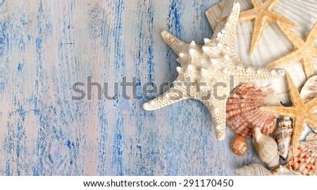 Starfish, Shell, Sea Life. #291170450