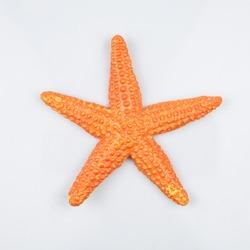 Starfish toy isolated on white background.