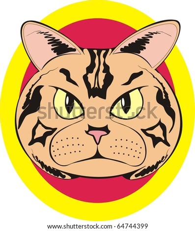 Staring brown cat face color raster illustration