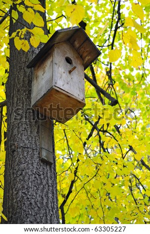 starling house on the tree and yellow leaves background