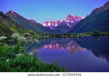 Starry night on a mountain lake with mirror water #1173442936