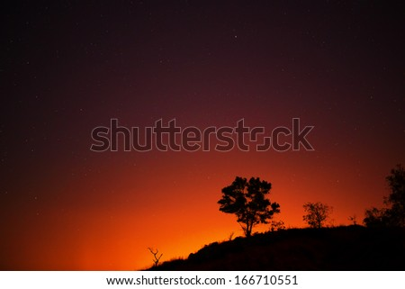 Starry night on one tree hill with the city lights glowing in the background