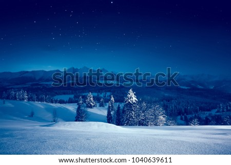 Starry winter night. Stunning night landscape. Sky full of stars over snowy mountains and valley. #1040639611