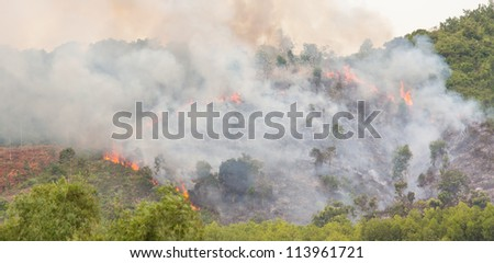 Starting forest fire with lots of smoke, Vietnam