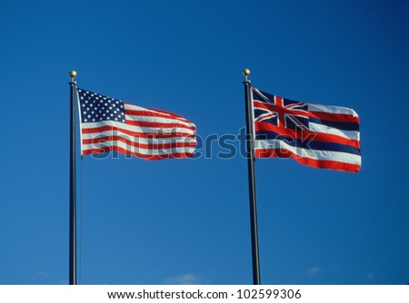 State Flag of Hawaii - stock photo