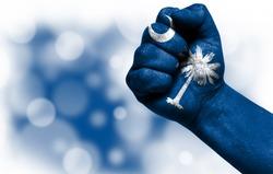 State of South Carolina on male fist