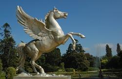 Statue flying horse pegasus a greek mythology figure in an irish garden