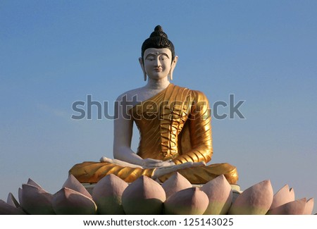 Statue of buddha in bodh gaya