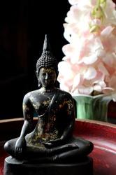 Statue of Buddha sitting, Dark background and  flower behind.