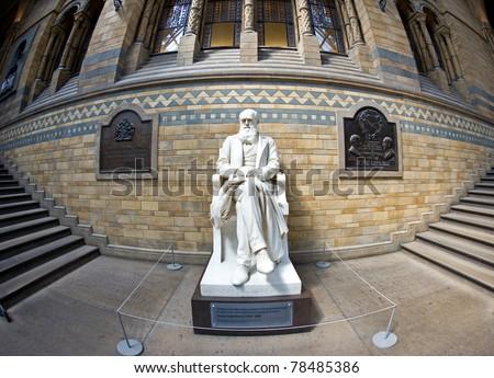 Statue of Charles Darwin, Natural History Museum. London, United Kingdom.