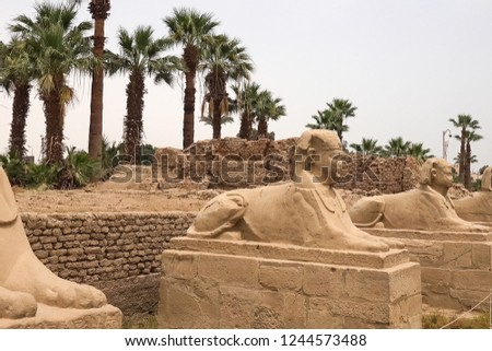 Statues of other Egypt. With the temple monuments megaliths #1244573488