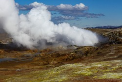 Steam rises from the bowels of the earth. Geyser in Iceland. Alternative energy source.