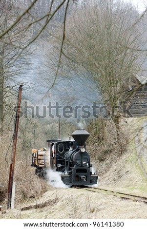 steam train, Ciernohronska Railway, Slovakia - stock photo