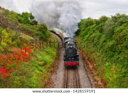 Steam train on Dartmouth Steam Railway #1428159191