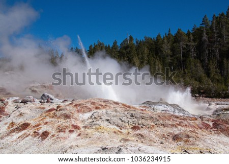 Steamboat Geyser in Norris Geyser Basin in Yellowstone National Park in Wyoming in the USA