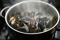 Steaming blue mussels in a steel pot with boiling broth, onions and herbs on a black stove, cooking a delicious seafood recipe, selected focus, narrow depth of field