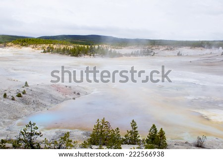 Steaming lake and colorful thermophilic organisms in the streams of hot water.  Norris Geyser Basin, Yellowstone National Park USA