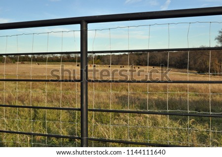 Steel cross-fencing, fence posts with square wire looking out onto brown pasture on Texas farm against pale blue sky. #1144111640