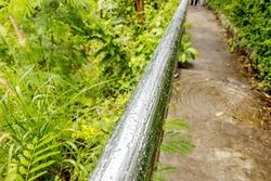 Steel rods wet rain water in garden
