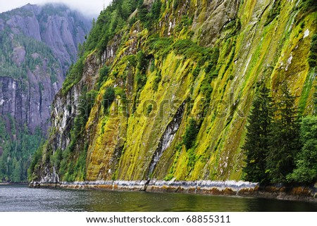 Steep mountain cliffs of the Misty Fjords near Ketchikan, Alaska
