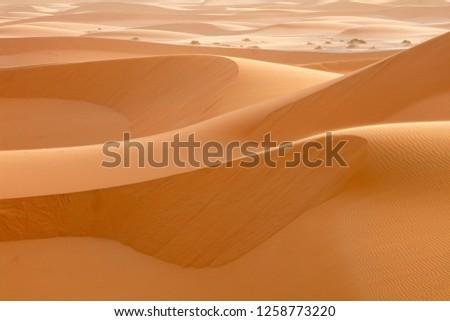 steep sand dunes  in desert in Morocco #1258773220