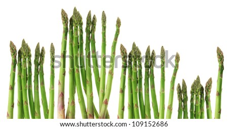 Stems of Asparagus on White Background