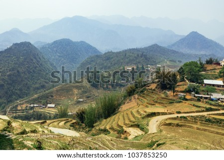 Step ladder farm on the hill with villages, mountain and fog in the background in summer in the morning in Sa Pa, Vietnam. #1037853250