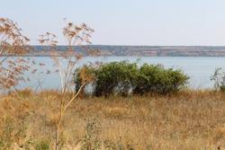 steppe and Lake
