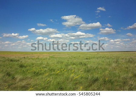 Steppe is an ecoregion, in the montane grasslands and shrublands and temperate grasslands, characterized by grassland plains without trees apart from those near rivers and lakes. #545805244
