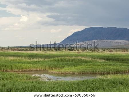 steppe, prairie, veld, veldt. synonyms: plains, grasslands. open, uncultivated country or grassland. Altyn Emel National Park #690360766