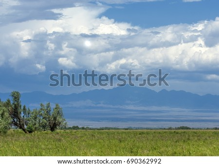 steppe, prairie, veld, veldt. synonyms: plains, grasslands. open, uncultivated country or grassland #690362992
