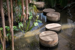 Stepping stone in a pond cross the water with flowers beside and blur branch in front