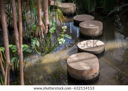Stepping stone in a pond cross the water with flowers beside and blur branch in front #632114153