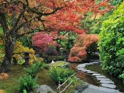Stepping stones across the pond  in the Japanese Garden amidst autumn colors