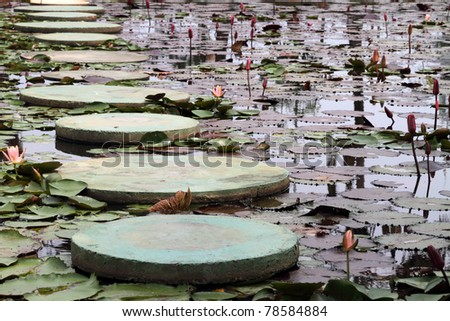 stepping stones through a water lily pond