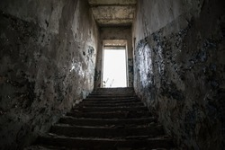 Steps from the basement to the light.