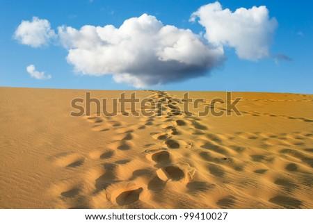 Steps in the desert sand