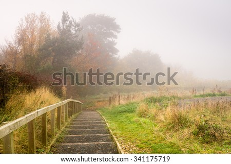Steps to Flodden Monument in Fog / Fog shrouds the orange leaves of Autumn next to the pathway to Flodden Monument