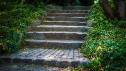 Steps with paving stones and landscaping, gloomy steps to the castle.