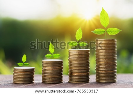 stept growing plant with money stack. finance accounting concept #765533317