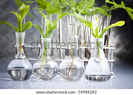 Sterile conditions, laboratory - stock photo