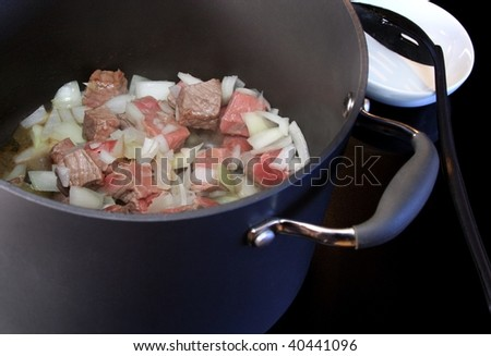 Stew pot on stove with ingredients just starting to cook