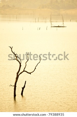 Stick in the Reservoir - stock photo