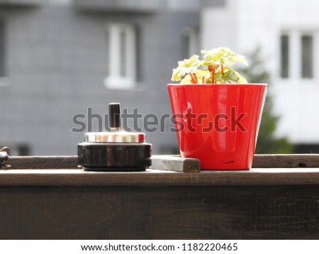 Stil leben with red flowerpot and black ashtray on a blurred grey background Stock foto ©