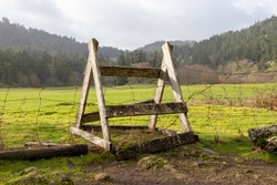 stile over a fence in a field on Vancouver Island, British Colum