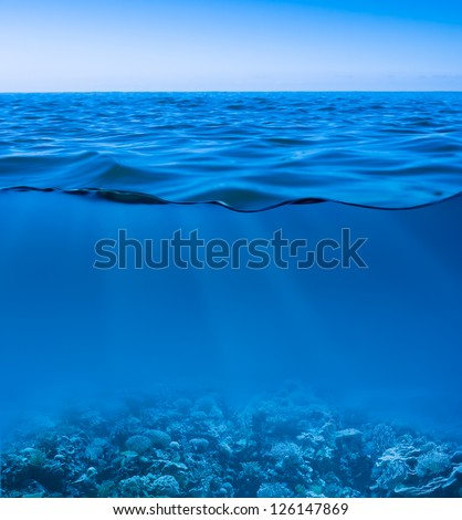 still calm sea water surface with clear sky  and underwater world discovered