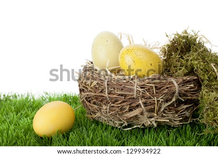 Still life arrangement of natural and dyed traditional Easter Eggs in a neat straw nest with moss on green grass against a white background with copy space